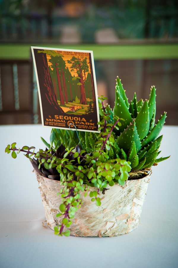 Eco Friendly Centerpieces | Love Wed Bliss