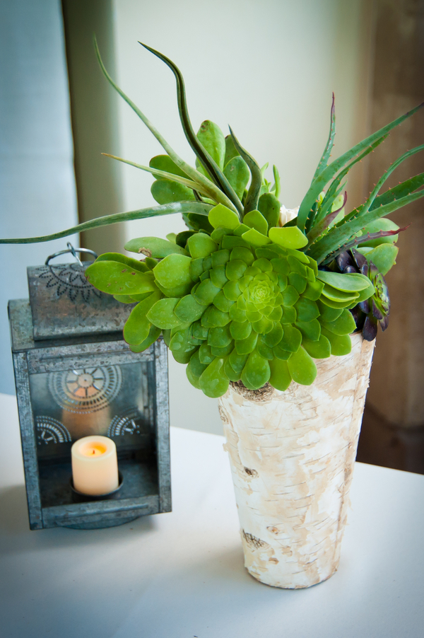 Wedding Succulents Centerpiece | Love Wed Bliss