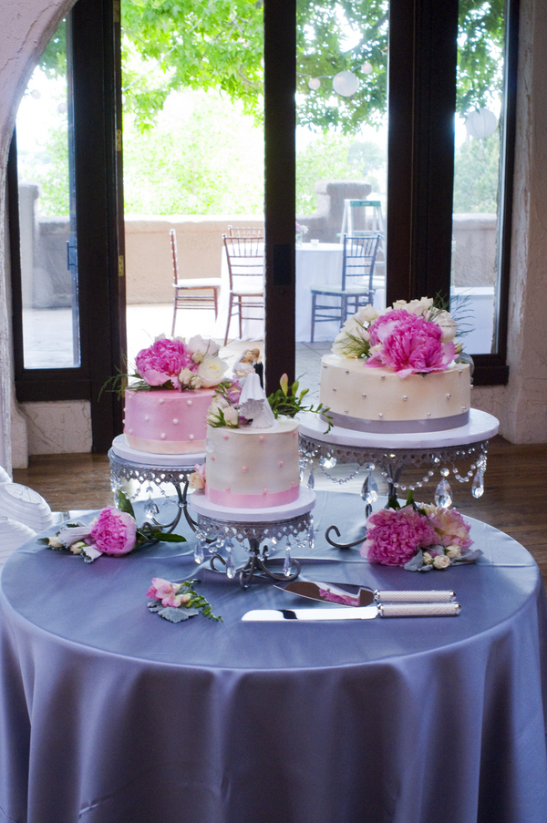 Elegant Silver and Pink Wedding Cakes