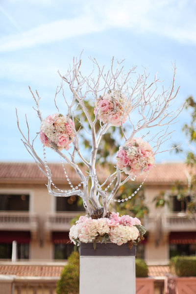 Manzanita Branches for Weddings