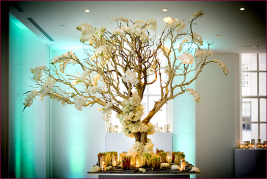 Manzanita Wedding Wishing Tree