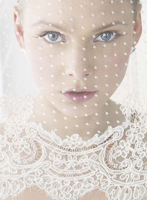 Picture of Lace Bridal Veil