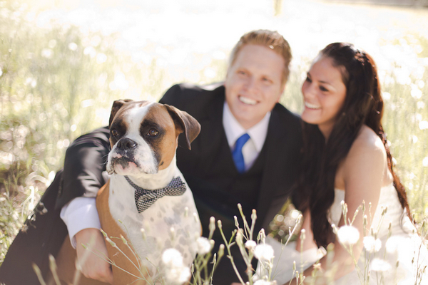 After Wedding Photos with Dog | Love Wed Bliss
