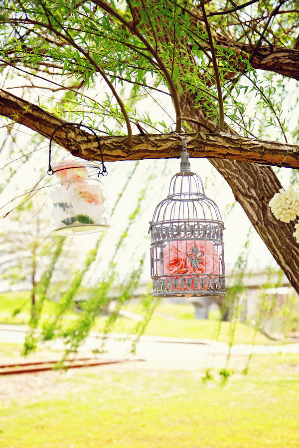 French Birdcage Wedding Inspiration